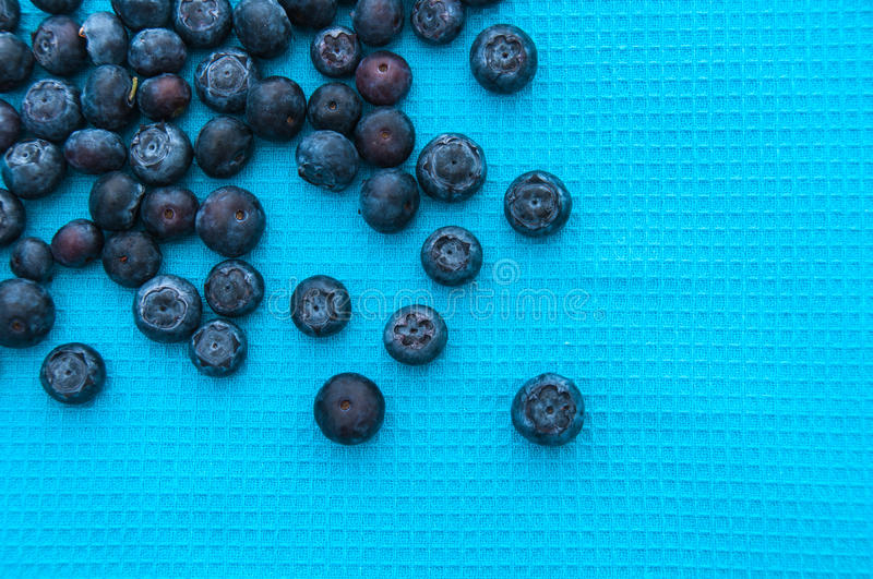 Blueberries on a blue background royalty free stock photo