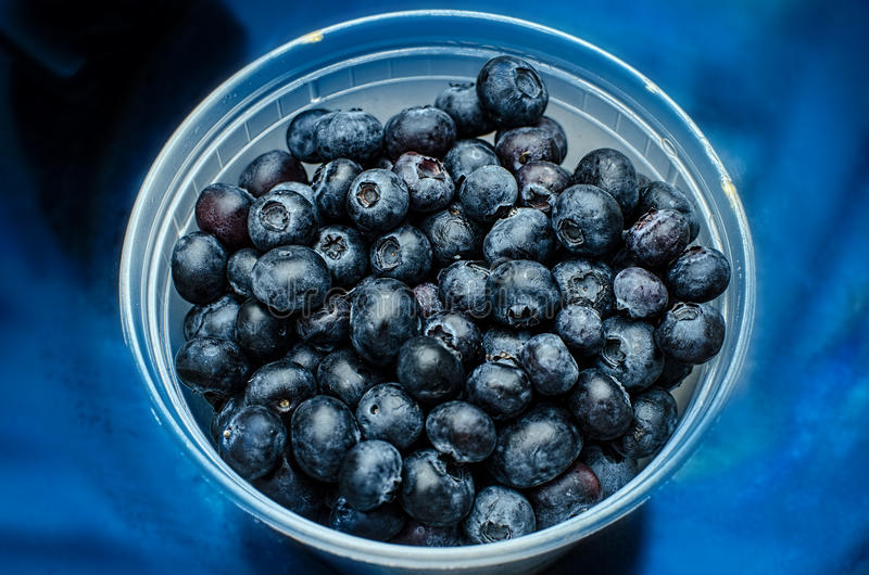 Blueberries in bowl. Blueberries in a bowl on blue background stock photos