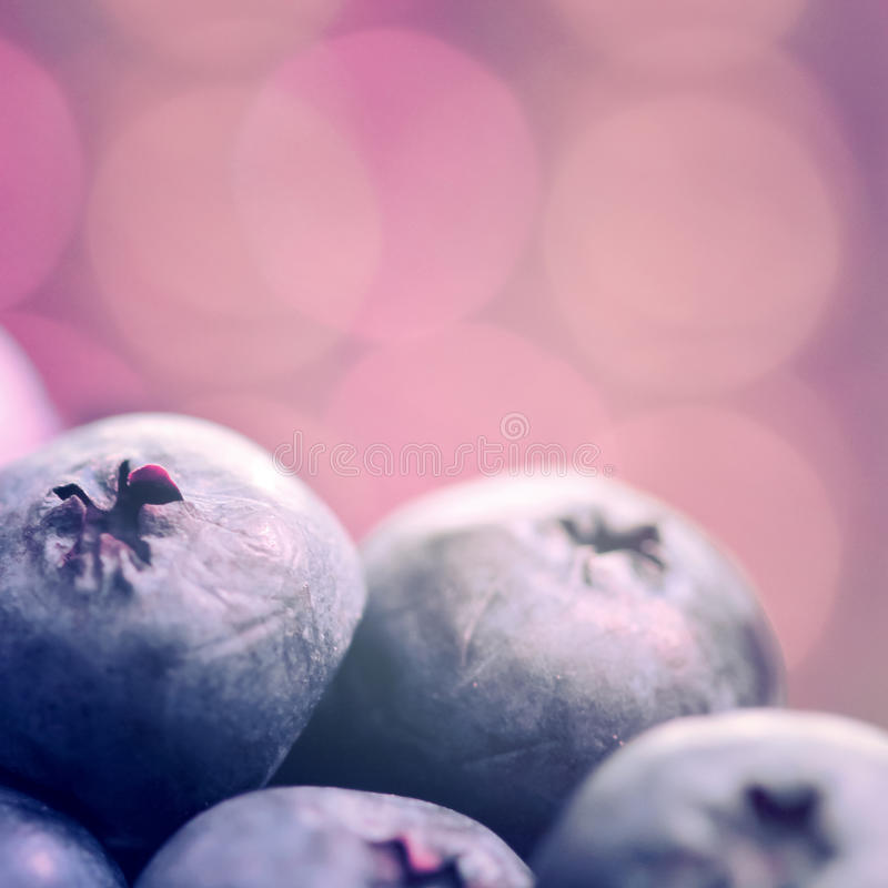 Blueberries Close Up stock photo