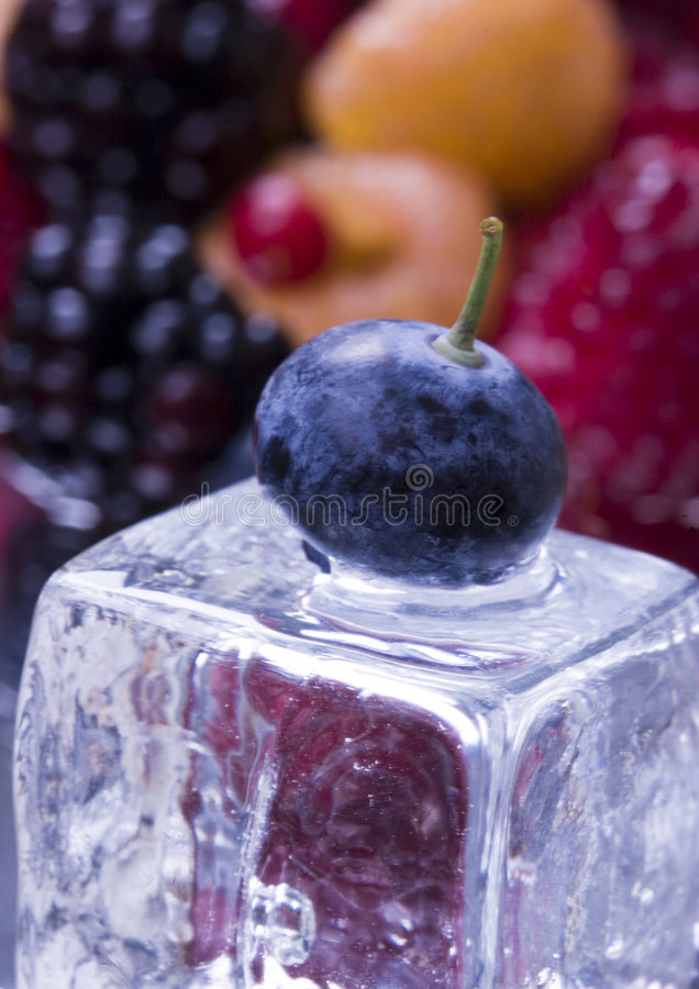 Blueberries and cranberries royalty free stock photos