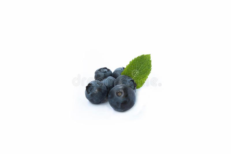 Blueberries with leaf. On white background stock images
