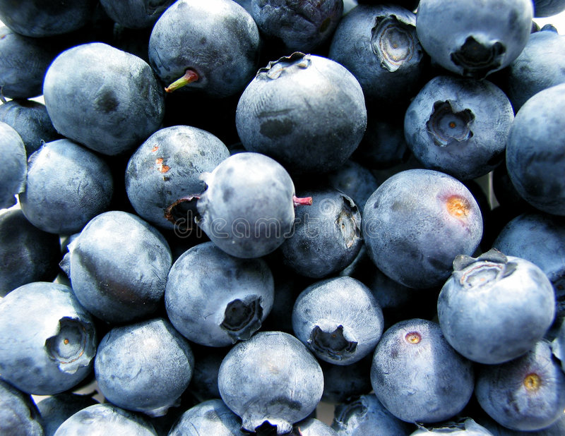 Download Blueberries macro stock photo. Image of detail, grocery - 470228