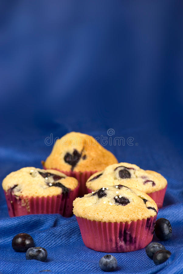 Download Blueberries muffin stock image. Image of blue, background - 24582755