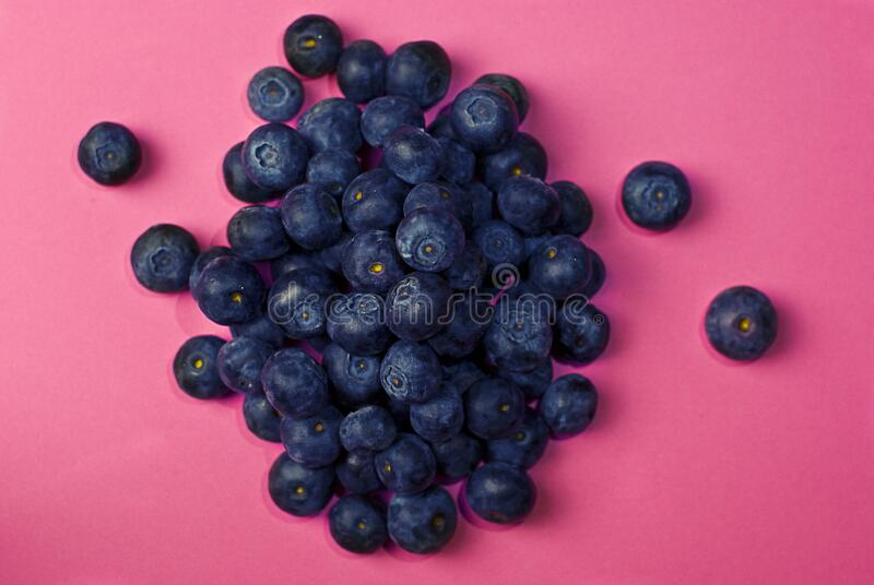 Blueberries On Pink Free Public Domain Cc0 Image