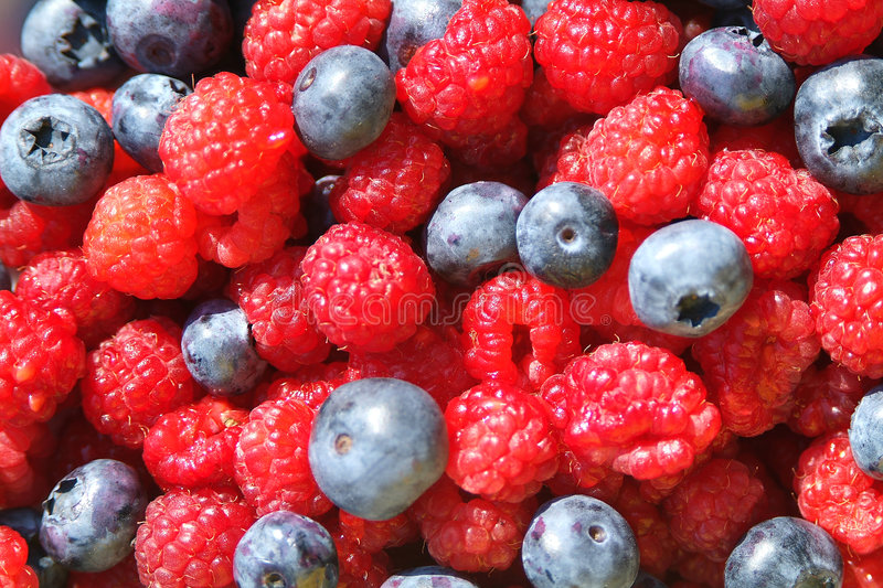Download Blueberries And Raspberrries Stock Photo - Image of wild, raspberry: 195050