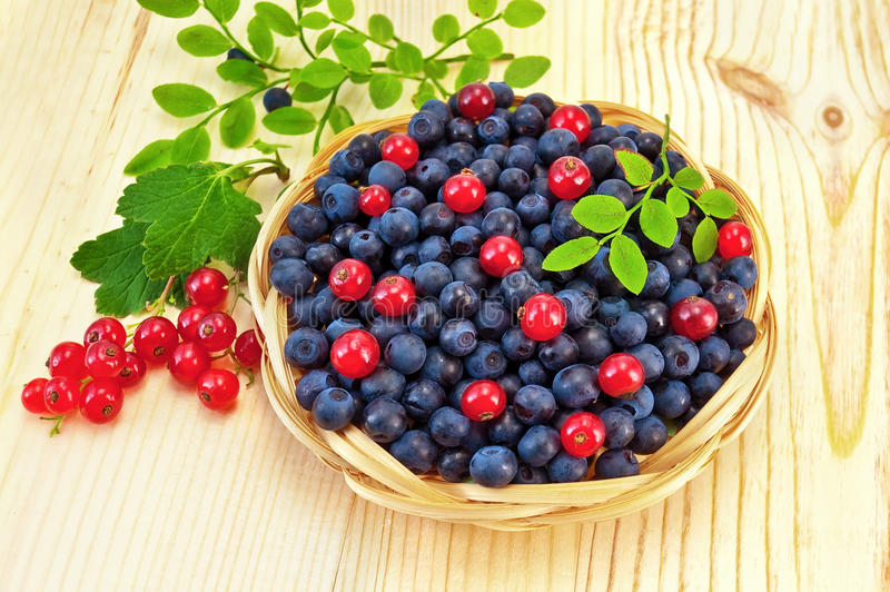 Blueberries with red currants on the board royalty free stock photos