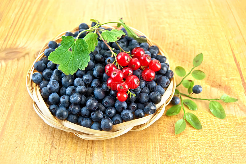 Blueberries with red currants on the board stock photography