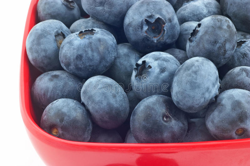 Blueberries In Red Dish Stock Photos