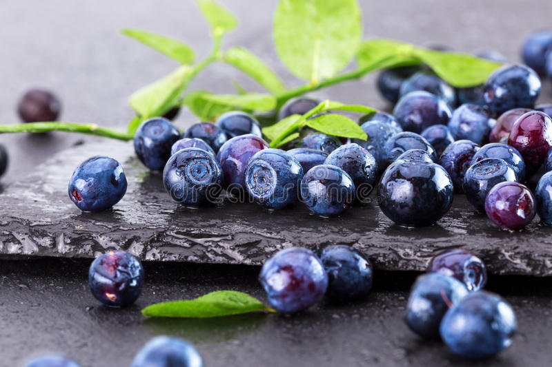 Blueberries on a slate table royalty free stock photos