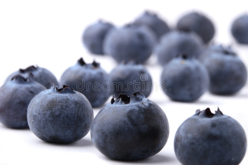 Blueberries on white royalty free stock image