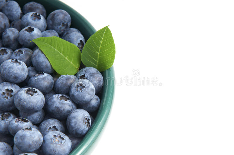 Download Blueberries From The Wood In A Bowl Isolated Stock Image - Image: 26451373