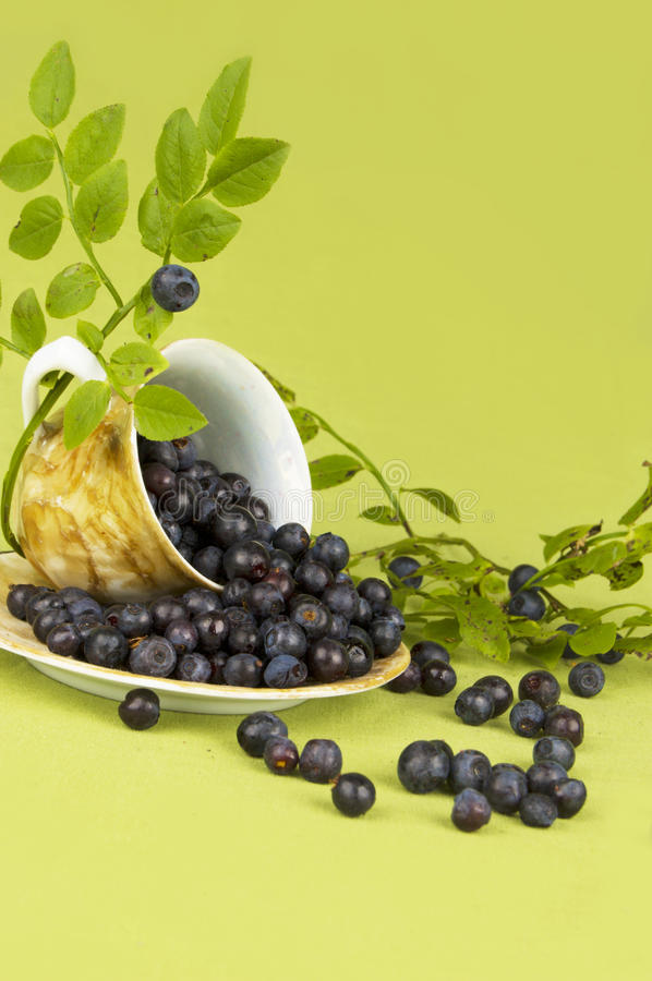 Download Blueberry Royalty Free Stock Images - Image: 10831499