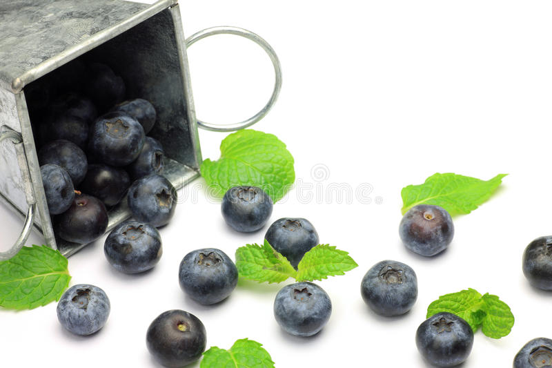 Blueberry. I took the state that a blueberry spilled out the billy stock photos