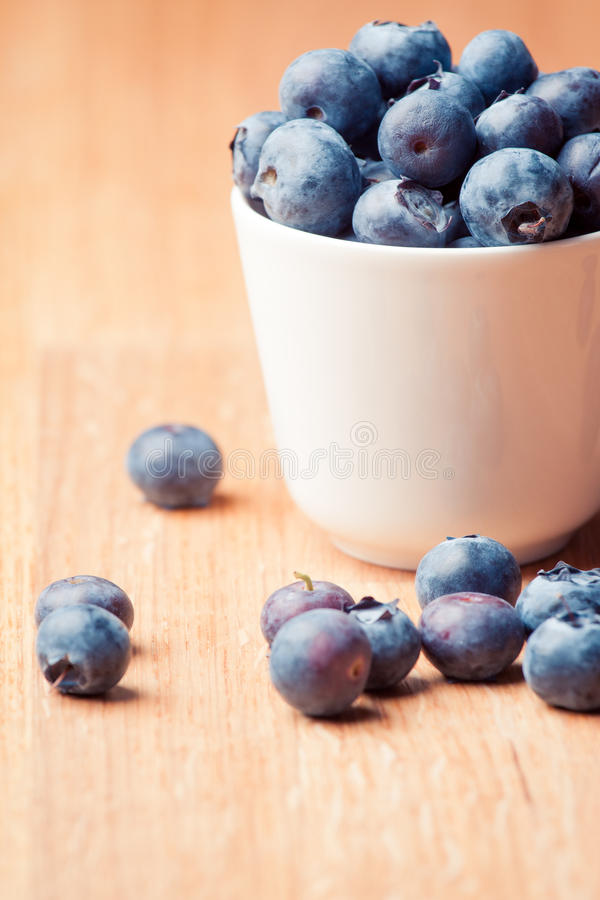 Download Blueberry stock photo. Image of wood, blueberries, bilberry - 24396010