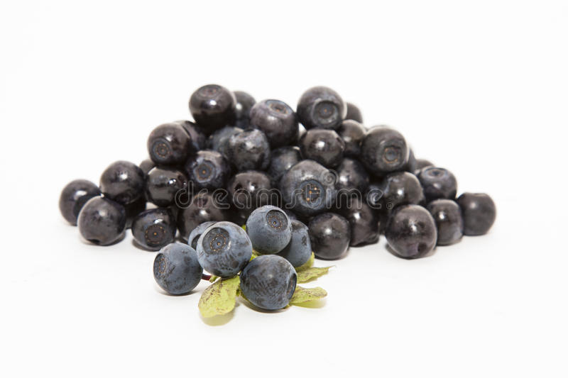 Download Blueberry stock image. Image of fresh, background, leaf - 26531269