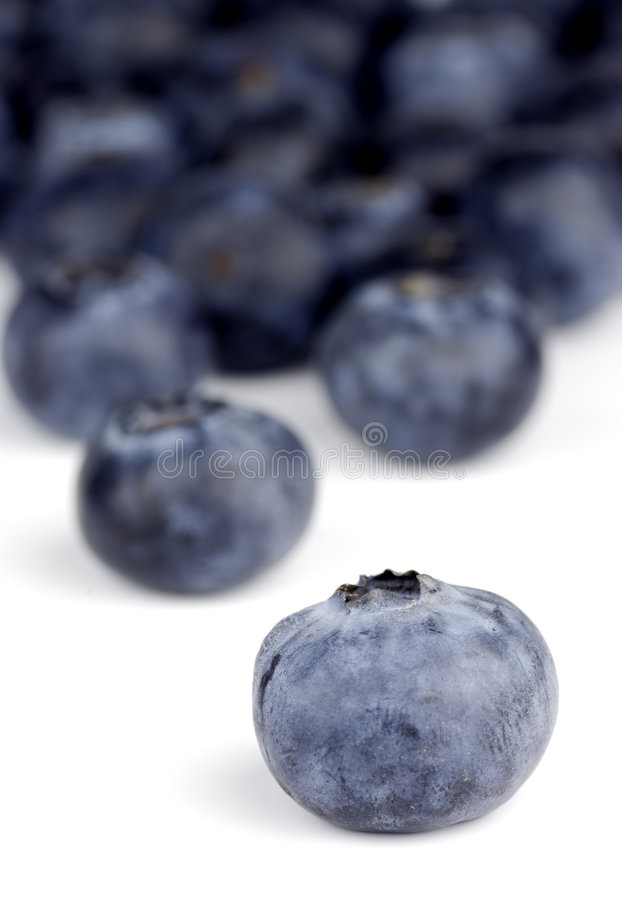 Download Blueberry Stock Photo - Image: 4541410