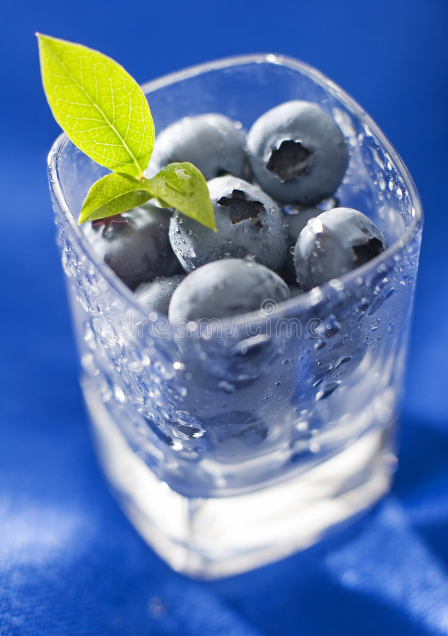 Download Blueberry stock image. Image of farm, round, juicy, delicious - 5622705
