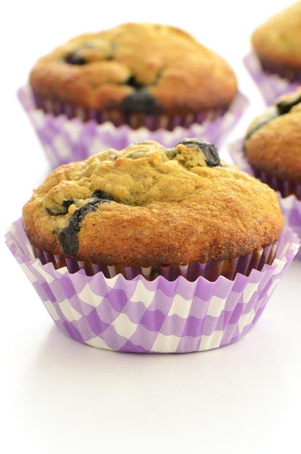 Blueberry Banana Muffins Stock Photo