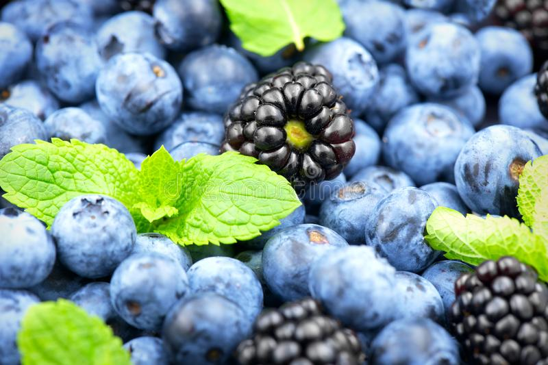 Blueberry and blackberry background. Ripe and juicy fresh picked blueberries. Closeup stock images