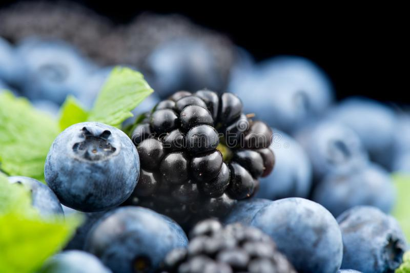 Blueberry and blackberry background. Ripe and juicy fresh picked blueberries. Closeup stock photography
