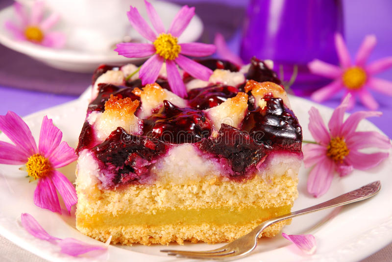 Download Blueberry And Coconuts Cake Stock Image - Image: 15202349