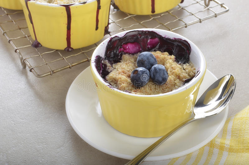 Download Blueberry Crumble In Ramekins Stock Image - Image: 26230845