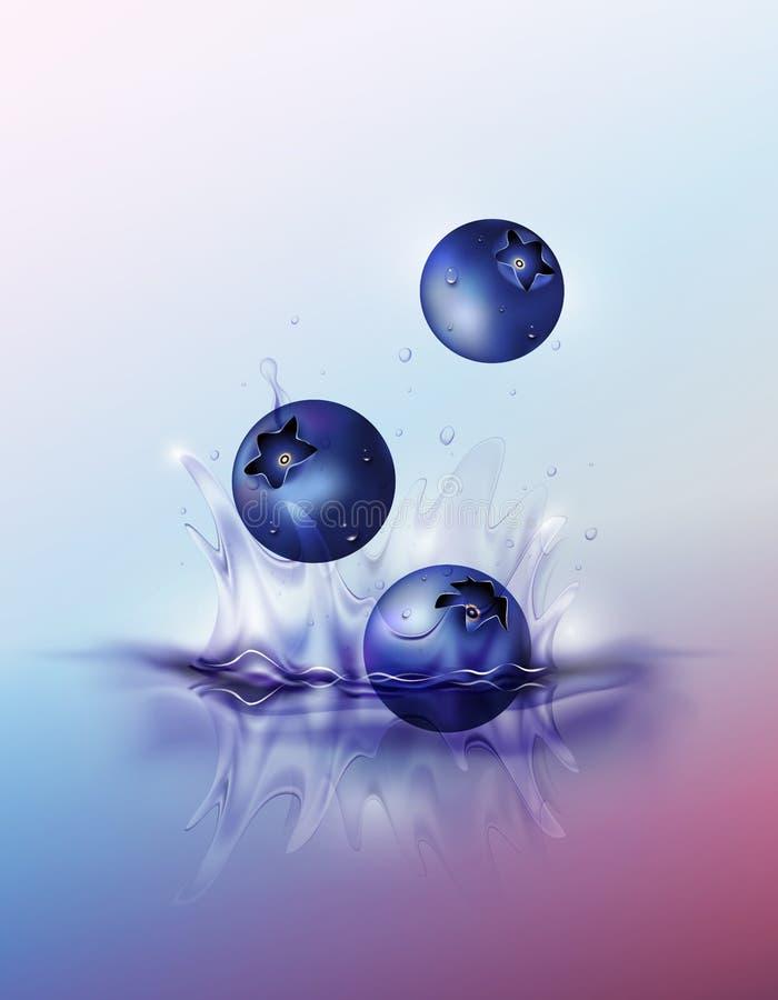 Blueberry drop on juice splash and ripple, Realistic Fruit and yogurt, transparent, vector illustration stock illustration