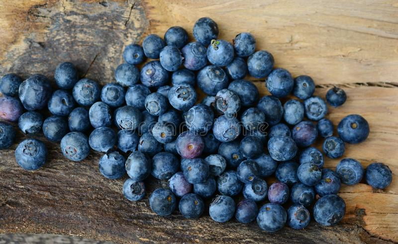 Blueberry, Fruit, Berry, Bilberry royalty free stock photography