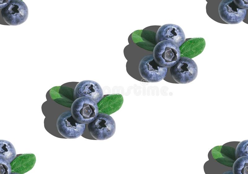 Blueberry with green leaves in hard light on white background. Superfoods, diet seamless pattern. Vegetarian royalty free stock photo
