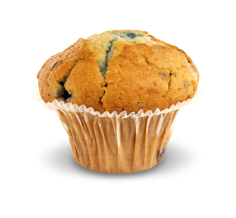 Download Blueberry Muffin stock photo. Image of white, dessert - 15828440