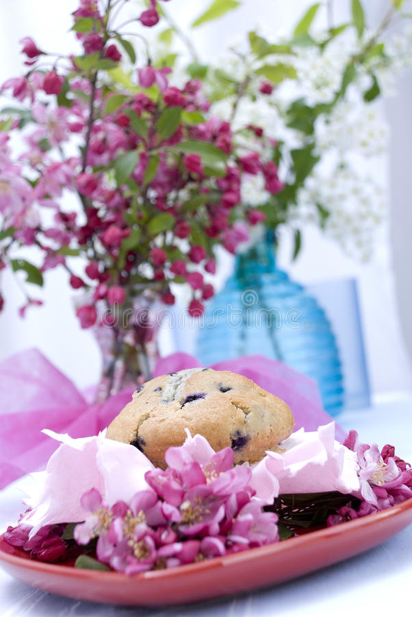 Download Blueberry muffin stock photo. Image of muffin, moist - 16231962