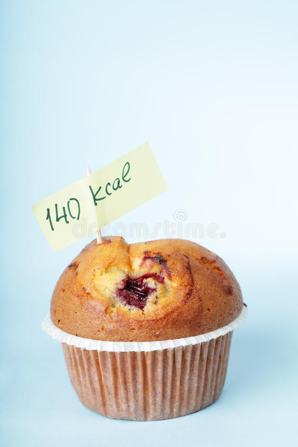 Blueberry muffin royalty free stock photography