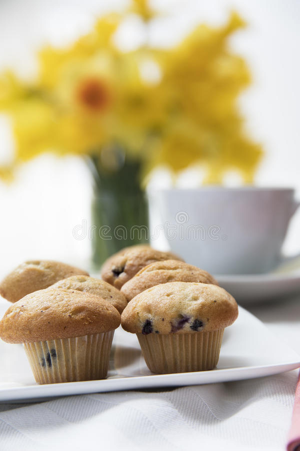 Blueberry Muffin Break royalty free stock photography