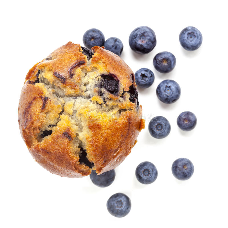 Blueberry Muffin Isolated on White Top View. Blueberry muffin, isolated on white, top view. With fresh fruit royalty free stock image