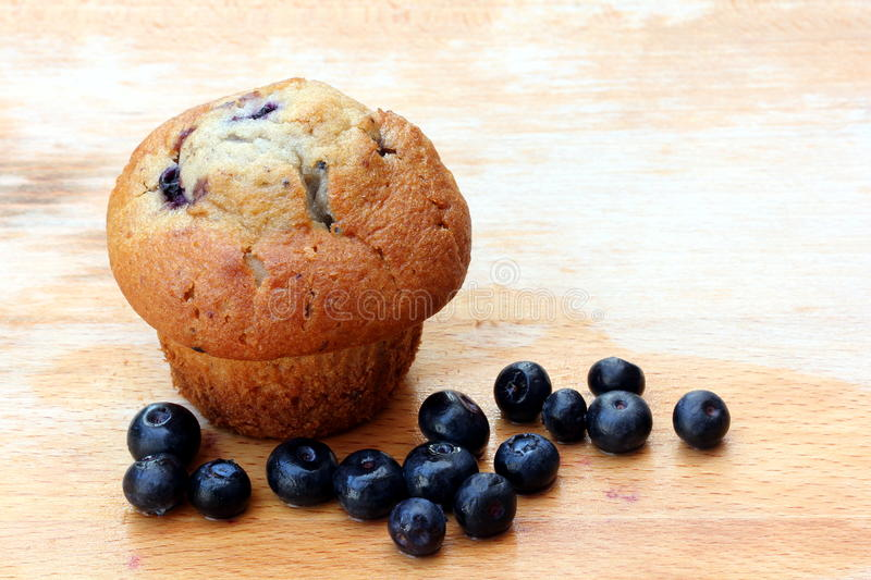 Blueberry muffin. A single blueberry muffin on a board with fresh blueberries scattered in front stock photo