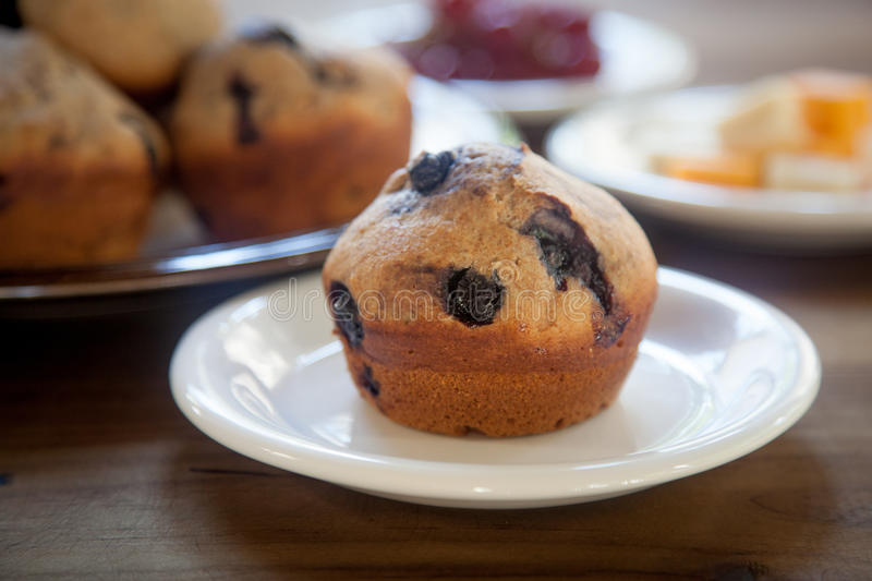Blueberry Muffin on White Plate stock image