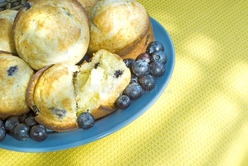 Blueberry Muffins by a Sunny window stock photo