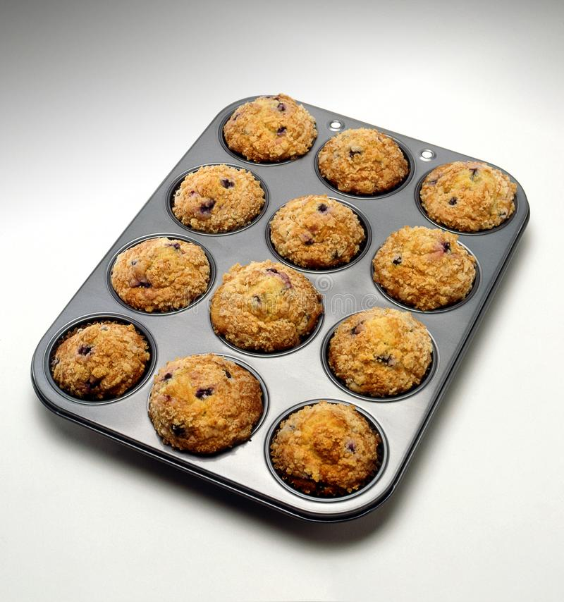 BLUEBERRY MUFFINS IN TRAY ON WHITE SURFACE. With clean atmosphere stock images