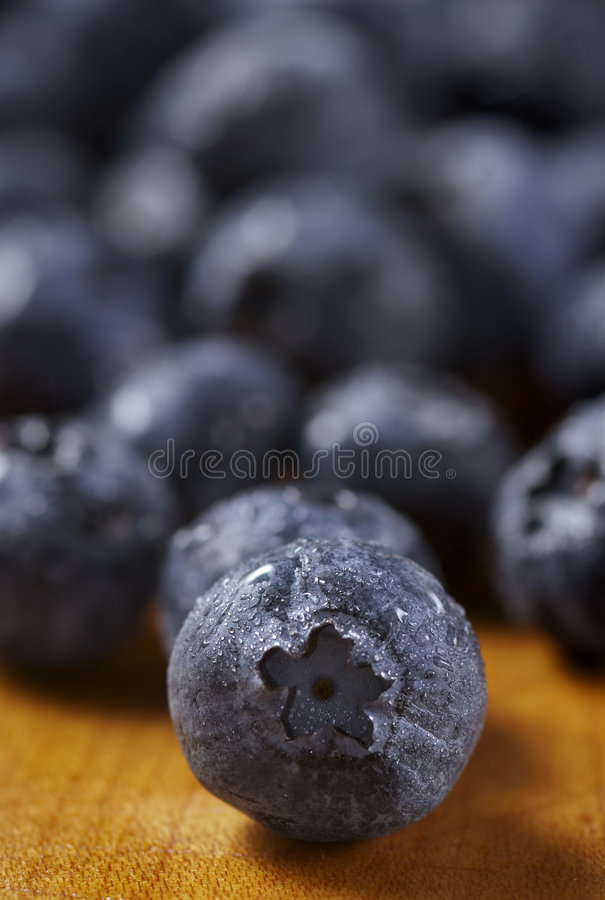 Blueberry out front stock images