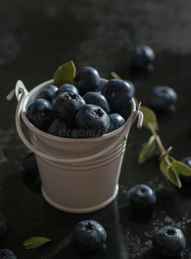 Blueberry on the pail morning light, dark photo. Summer morning light royalty free stock photography