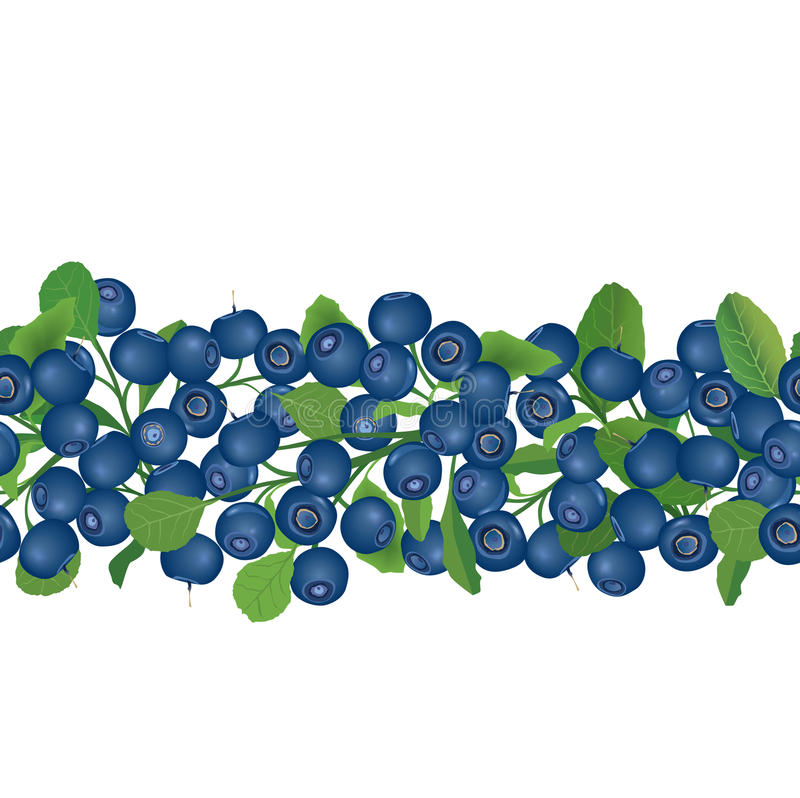 Blueberry seamless background. Ripe red cranberries with leaves. Vector illustration. stock illustration