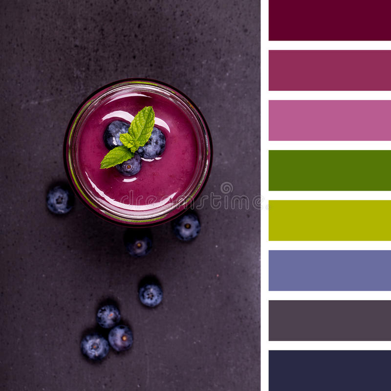 Blueberry smoothie palette royalty free stock images