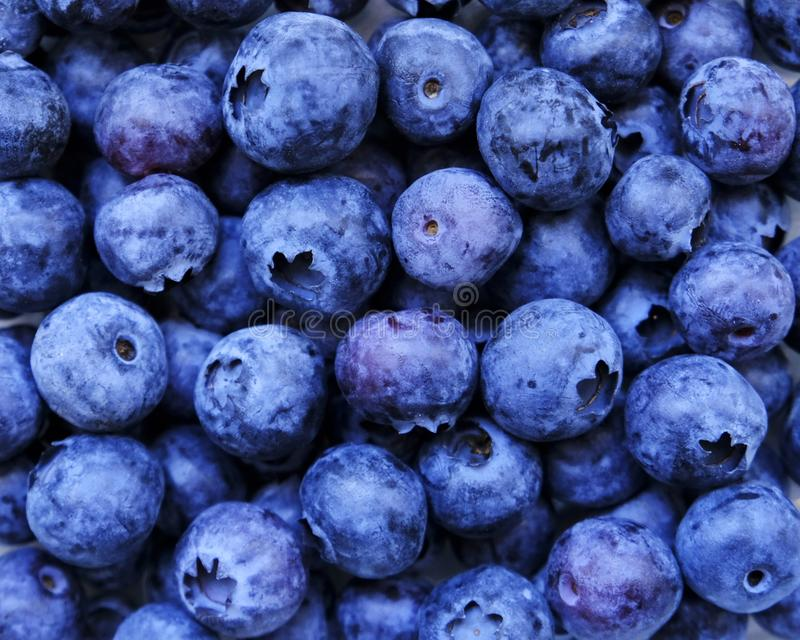 Blueberry, summer fruit, close up. Great bilberry texture for background. Vegan raw food, healthy food, vitamins stock photo