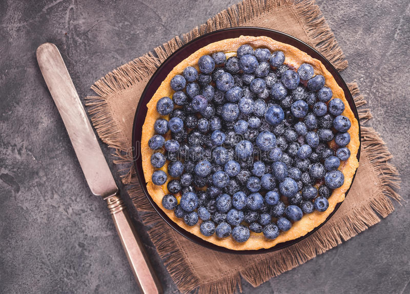 Blueberry tart with icing sugar. Top view stock photo