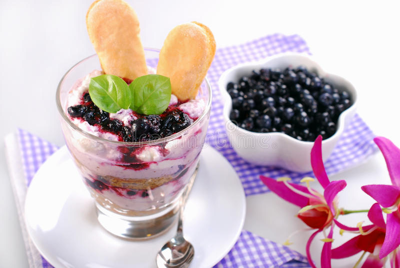 Blueberry tiramisu dessert in glass royalty free stock photo