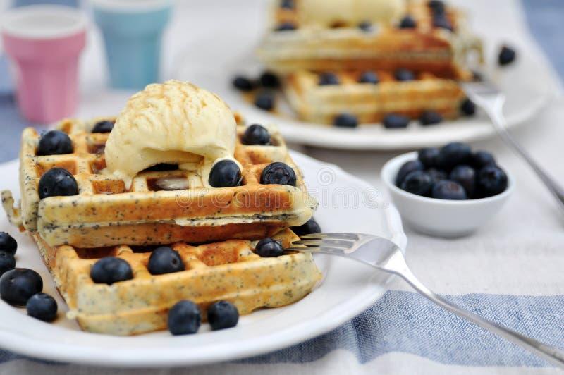 Blueberry waffles stock photo