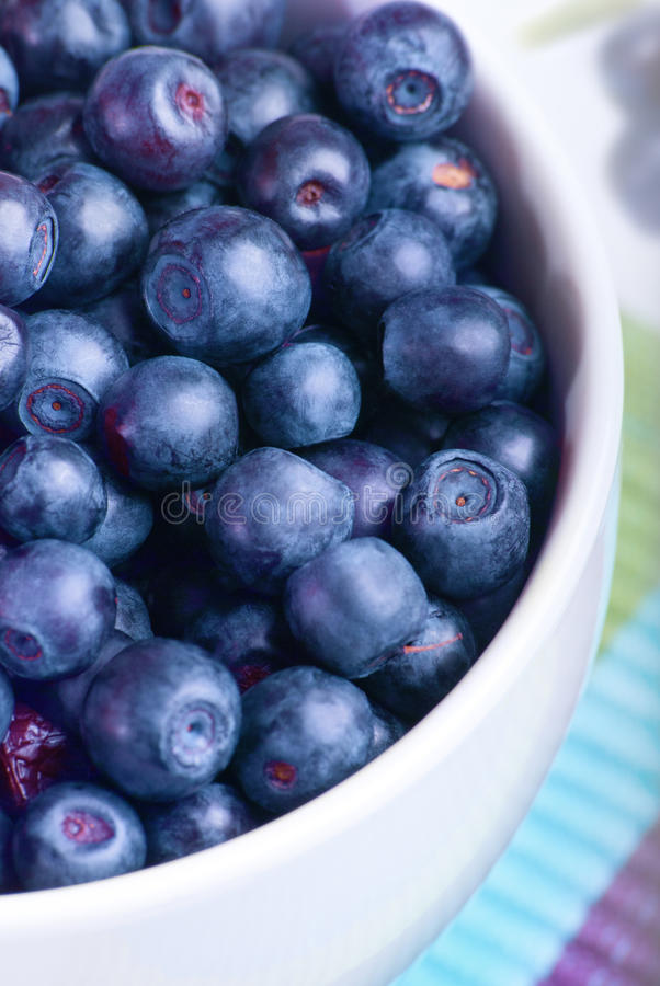 Blueberry in white plate. On the striped serviette stock images