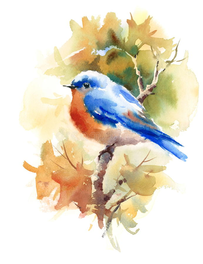Bluebird Bird on the Branch with Autumn Leaves Watercolor Fall Illustration Hand Painted stock illustration