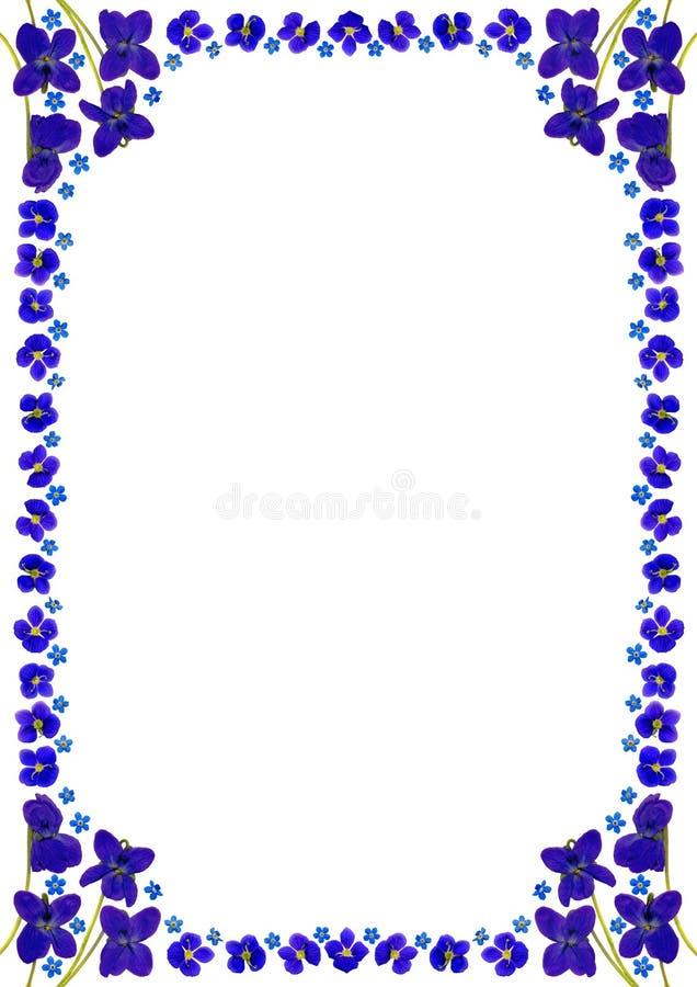 BlueBlossomsFrameDinWhite διανυσματική απεικόνιση