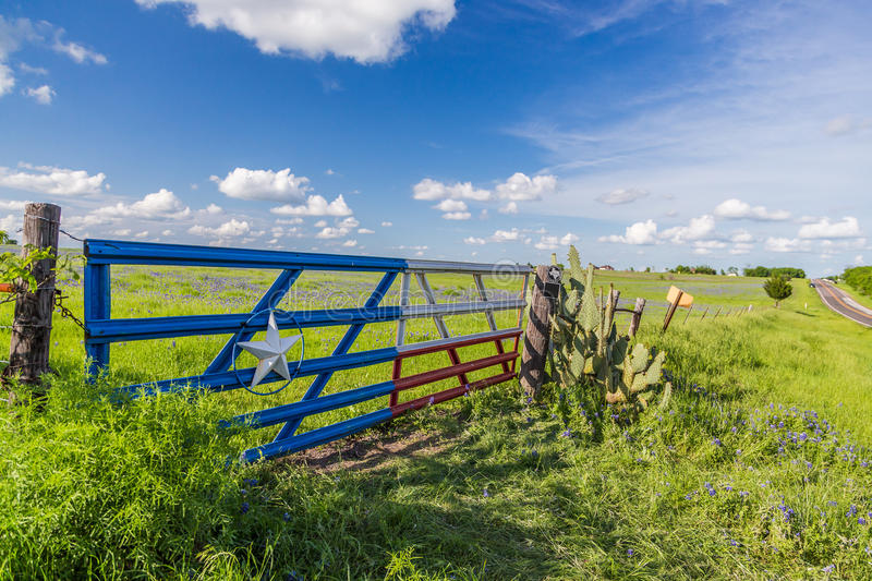 Bluebonnet field and blue sky in Texas countryside . royalty free stock photography